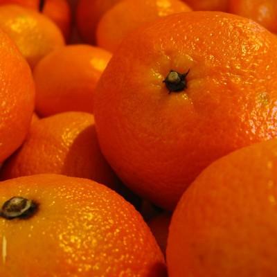 clementine x1