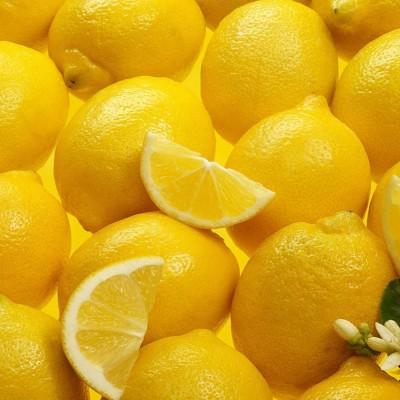lemons x1